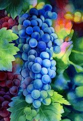 Sunlit Grapes (Hailey E Herrera Art Journey) Tags: fruits fruit watercolor harvest grapes grapevine harvesttime negativepainting sunlitgrapes