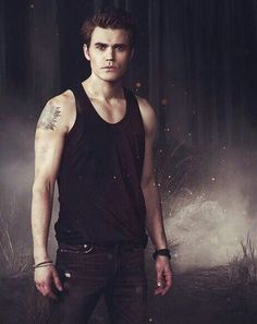 STEFAN SALVATORE POSTER 5th seasontvd