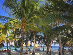 As good as it gets .... 🌴 Belize All Inclusive, All Inclusive Honeymoon, Romantic Honeymoon, Romance, Island, Romance Film, Romances, Romantic Honeymoon Destinations, Islands
