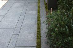 Matthew Cunningham Landscape Design LLC's Design Ideas, Pictures, Remodel, and Decor