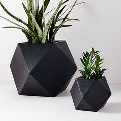 Explore west elm's collection of outdoor planters and terrariums. Dress up your garden or patio with our stylish outdoor collections. Stone Planters, Modern Planters, Outdoor Planters, Concrete Planters, Ceramic Planters, Hanging Planters, Garden Planters, Outdoor Gardens, Planter Pots