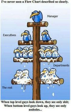 Management Structure Cartoon - Share Its Funny Funny Photos, Best Funny Pictures, Funniest Pictures, Caricature, Bodybuilding Humor, Funny Jokes, Hilarious, Meme Comics, Good Humor