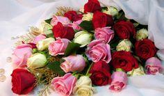 30% Off Rose & Daisy Bouquet @ Debenhams Flowers Various UK Postcodes http://www.myvouchercodes.co.uk/debenhams-flowers