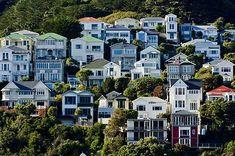 Mount Victoria houses, Wellington (caital city) New Zealand Wellington House, Wellington New Zealand, Auckland, Capital Of New Zealand, Victoria House, New Zealand Houses, Anna Maria Island, House Landscape, New Zealand