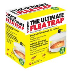 Victor Insect Trap at Lowe's. Control fleas without having to spray chemicals in your home or on your pets with The Ultimate Flea Trap from Victor. This patented trap monitors and Stink Bugs, Japanese Beetles, The Bait, Bees And Wasps, Humming Bird Feeders, Pest Control, Fleas, Your Pet, Walmart