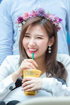 all credit goes to the original source Nayeon, Kpop Girl Groups, Kpop Girls, Shy Shy Shy, Sana Cute, Twice Members Profile, Sana Momo, Sana Minatozaki, Twice Once