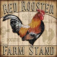Country Rooster I Canvas Art - Jen Killeen (24 x 24)