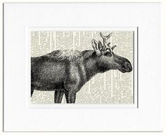 moose dictionary page print