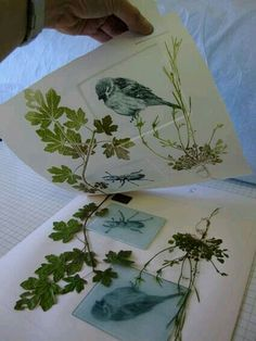 'Drypoint and Mono Print' is a course by Devon Guild member Lynn Bailey from Double Elephant Print Workshop Tampons, Art Plastique, Art Techniques, Art Education, Art Lessons, Screen Printing, Paper Art, Art Projects, Illustration Art