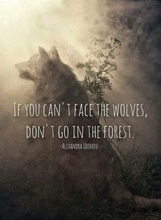 If you can't face the wolves, don't go into the forest.