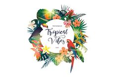 You will get 4 exotic vector logos with leaves, flower, plants, macaws, toucans and light flashes. Tropical Design, Tropical Vibes, Travel Agency Logo, Tropical Background, Prophetic Art, Sky Design, Purple Sky, Creative Advertising, Creative Sketches