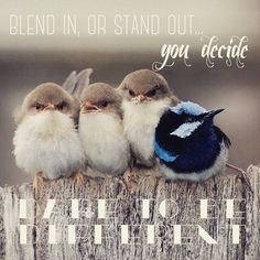be DIFFERENT! be PRO!