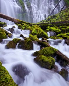 Proxy Falls, Cascade Mountains, Oregon