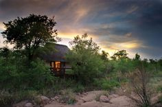 Have you long fantasised of a romantic safari under the wide open African skies? Now is your chance to make a dream come true by entering our fantastic competition to win two nights for two at the ultra luxurious Sabi Sabi Private Game Reserve in South Africa. Tucked deep in the heart of unspoilt Africa,