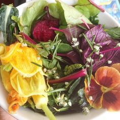 Organic garden super salad with so much flavor it didn't need dressing. Amaranth, kale, spinach, squash blooms, purslane, beet and greets, radish and greens, onion blooms, Rosemary, mustard and pansy. #eatsalltheflowers #youarewhatyoueat