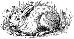 http://freevintagedigistamps.blogspot.com/2012/02/free-vintage-digital-stamp-bunny-rabbit.html