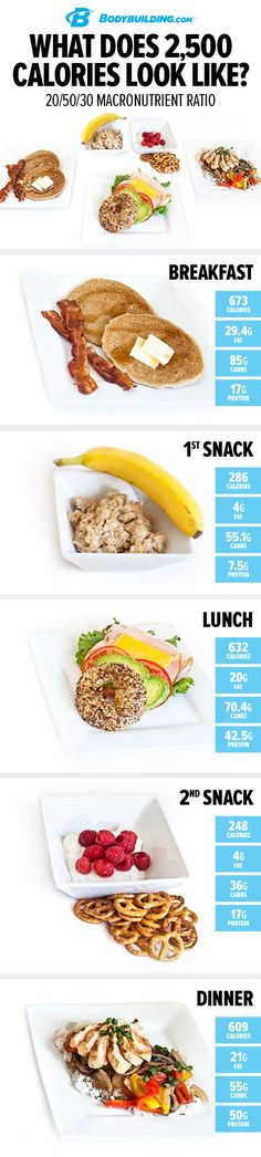 What Does 2,500 Calories Look Like? Use this handy visual guide to see a day\'s worth of meals across 3 different macronutrient ratios!