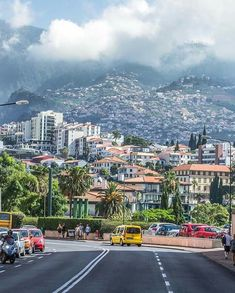 Fancy an that's f illed with and ?Swap chilly climates for and a local to fall in with Funchal, Portugal Travel, Lisbon Portugal, Beautiful Islands, Beautiful Places, Places Around The World, Around The Worlds, Best Vacations, Pilgrimage