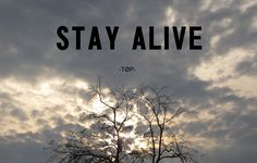 Stay alive friends...