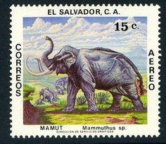 el_salvador_1979_2_hd.jpg (695×601)