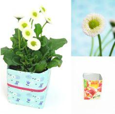 titatoni ♥ DIY - toller Blumentopf bzw. Vase. Aus dem Müll gebastelt: apfelsaftkarton + Jodsalzpackung +  Konservendose