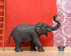 elephant art bright red funny bold diorama  Big by WildLifePrints, $18.00