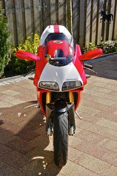 Ducati 916, Moto Ducati, Ducati Motorcycles, Cafe Racer, Used Parts, Birds, Vehicles, Motorbikes, Bird