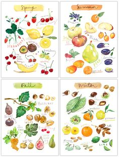 "Set of four fruit prints - Four seasons - In english Archival giclee reproduction prints from my watercolor illustrations. This seasonal fruits set is printed on fine art "" BFK Rives "" paper, smooth t"