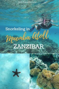 My experience snorkeling in Mnemba Atoll, the most famous conservation area in Zanzibar with beautiful coral reefs and clear blue water.