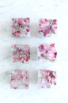 Homemade Floral Ice Cubes | Summer entertaining, summer party ideas and more from @cydconverse