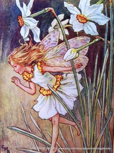 Cicely Mary Barker - The Narcissus Fairy