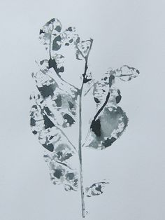 Kath Williamson. Direct print from a leaf.