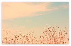 Antelope Island, Utah HD desktop wallpaper : High Definition : Fullscreen : Mobile : Dual Monitor