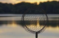 Wire net; Churn Creek, Chesapeake Bay; Worton, Maryland, USA.  October 2013.