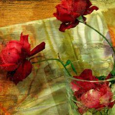 Those days of wine and roses.... - @frankyboy1- #webstagram