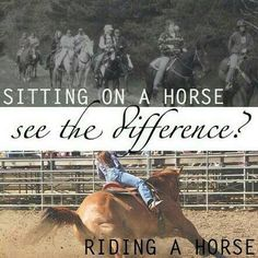 Adult pony ride vs real riding