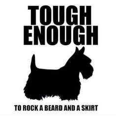 Scottie parents get this. West Highland Terrier, Terrier Dogs, Sealyham Terrier, Bull Terriers, Westies, Mans Best Friend, Dogs And Puppies, Doggies, Dog Life