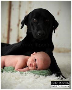 newborn with dog Florence, SC Newborn Photographer: Baby Rivers!! » Collin M. Smith Portrait Photography