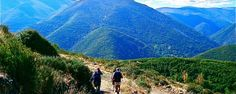 El Camino de Santiago.. I very much want to do this.