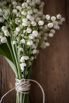 lily -of-the-valley. When I was younger, they would grow at my house and they would smell so beautiful. Love them!