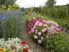 A cutting garden, nice!