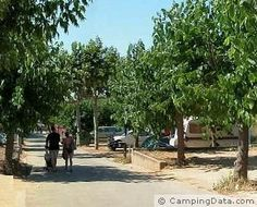 Camping MASNOU ¤¤¤ El Masnou (Barcelona, Spain) - Camping