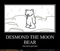 Des-Mond, the moon bear. Danisnotonfire, Amazingphil, Asdf Movie, Funny Jokes, Hilarious, Film School, Stuff And Thangs, I Love To Laugh, Edd