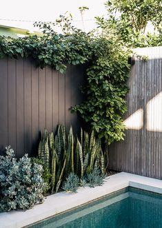 Backyard Pool Designs, Small Backyard Pools, Swimming Pools Backyard, Garden Pool, Outdoor Pool Areas, Poolside Landscape Ideas, Pool Landscape Design, Garden Design, Small Above Ground Pool