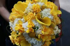 White Hydrangea, Yellow Craspedia, Yellow Calla Lilies, Yellow Spray Roses, Yellow Freesia, Green Bear Grass Loops ••••