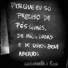 ♥♥ Guimarães Rosa