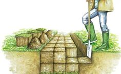 Rigolen statt Umgraben -  Das Rigolen ist eine spezielle Umgrabetechnik, die viel Kraft und Ausdauer erfordert. Sie eignet sich gut zum Beseitigen von Verdichtungen und Staunässe im Untergrund.