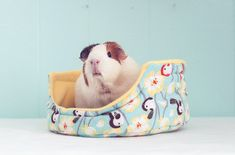 Guinea Pig Cuddle Cup with Absorbent Pad / Guinea Pig Bed / Fleece / Cozy / Size Large / Ultra Absorbent / Chickadees and Robins