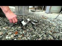 rakubrenning - YouTube