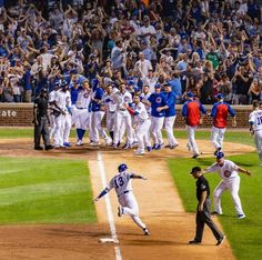 Chicago Cubs David Bote Walk-off Grand Slam Chicago Cubs Baseball, Baseball Boys, Baseball Field, Cubs Players, Cubs Team, Cubs Win, Chicgo Cubs, Go Cubs Go, Wrigley Field